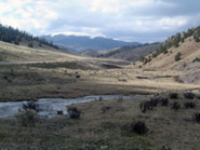 Help Protect the Valle Vidal
